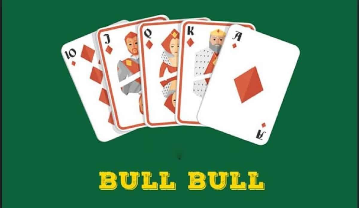 bull-bull